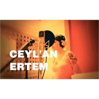 Cover: Ceyl'an Ertem - Düşmedim Daha