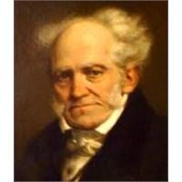 Devlet, Anne Karnı,arthur Schopenhauer.