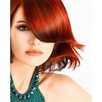 Dermalogica dan Saç Ürünleri