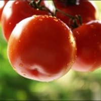 Antioksidan İçeren Besinler Nelerdir?
