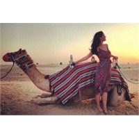 Katy Perry Dubai'de Deve İle Poz Verdi