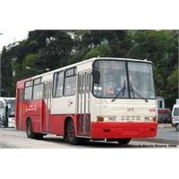 Bir Belediye Otobüsü Yolculuğu
