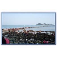 Kızıldeniz Mucizesi | Jindo Adası
