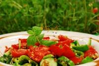 Oktay Usta dan Organik Semizotu Salatası