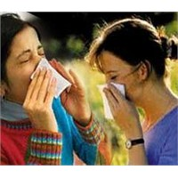 Gripsavar Besinler!