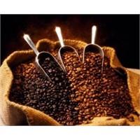 Kahve Faydaları