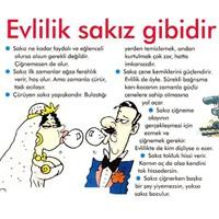 Evlilik İle Sakız Arasındaki İlişki (Karikatür)