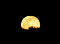 Ay Olmasaydı Ne Olurdu