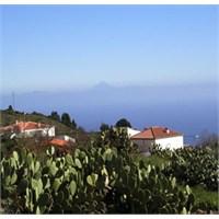 Kanarya Adalarında Tatil…