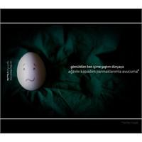 Aşk'tan Yumurta