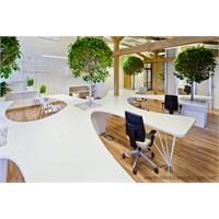Ofis Tasarımı İçin Örnek Modeller