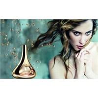 Cildinize Uygun Parfüm Nasıl Seçilir