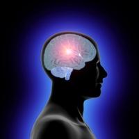 Alzheimer Ve Parkinson Hastaları İçin Yeni Umut