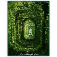 Aşk Tüneli | Klevan | Ukrayna