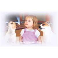 Evcil Hayvanların 6 Yararı