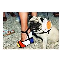 Ressam Mondrian'dan İlham Alan Moda!