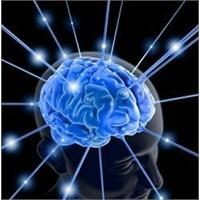 Parkinson'un 10 Temel Belirtisi