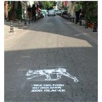 Kamusal Alanı Paylaşmak: İstanbul'un Köpekleri