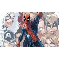 Örümcek Adam Dönüm Noktasında