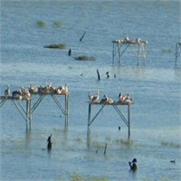 Kuşcenneti Milli Parkı