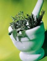 Şifalı Bitkilerin Bilinmeyen Etkileri