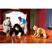Çocuklar Hayvan Sevgisi İçin Tiyatroda