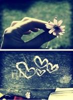 Adı Konulmamış Aşk