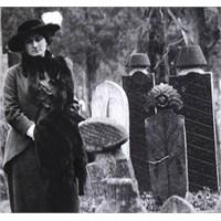Osmanlı Mezarlıklarıyla İlgili En İyi Fotoğraf