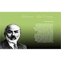 Meclis`te `Mehmet Akif` Konulu Sergi Açılacak