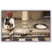 Farelere Adanmış Karni Mata Tapınağı | Hindistan