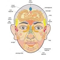 Yüzünüz Vücudunuzun Aynasıdır
