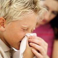 Grip Hafife Alinmamali