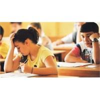 Sınav Çarkındaki Bir Öğrenci