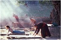 Tibetin Gençlik Pınarı 5 Hareketi
