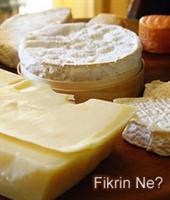 Peynir Dişlerin En İyi Dostu