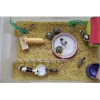 Çocuklar İçin Duyusal Havuz (Sensory Tub)