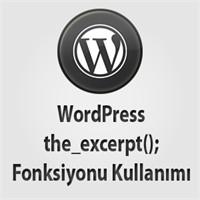 Wordpress Gelişmiş The_excerpt(); Fonksiyonu