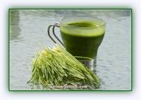 Buğday Çim Suyunun Önemli 40 Faydası