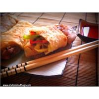 Çin Böreği Spring Rolls