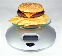 Gidalarin Kalori Duzeyleri Ve Yiyecek Onerileri