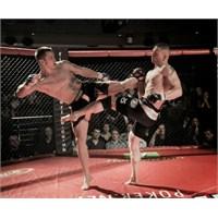 Kafes Dövüşü Nedir? Teknikleri Nelerdir?