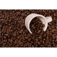 Yaşasin Kahve Devrimi