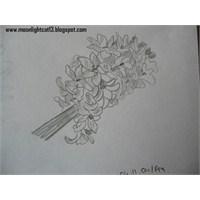 2004 Yılı Çizimlerim Bitti Bitiyor