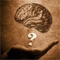 Beyin Yaşınız ?