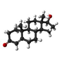 Testeosteron Nedir Ne İşe Yarar?