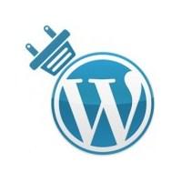 Wordpress Temaların İçindeki Gizli Tehlike