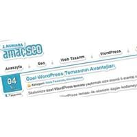 Amacseo Ücretsiz Wordpress Seo Teması