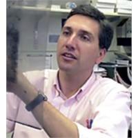 Türk Bilim Adamı Bağışıklık Sisteminin Sırlarından