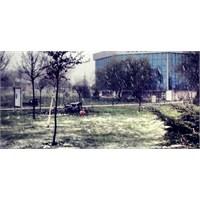 Sakarya Üniversitesi'ne Mart Karı Yağdı!