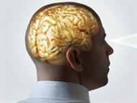 Beyin Hakkında En Çok Merak Edilenler